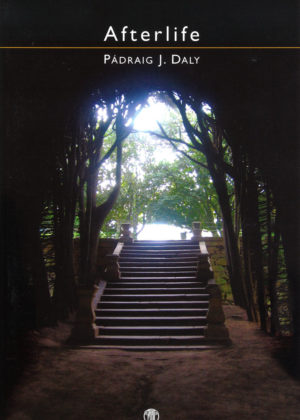 Cover of the book After Life