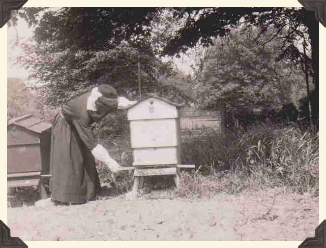 An Augustinian bee-keeper tending a hive.