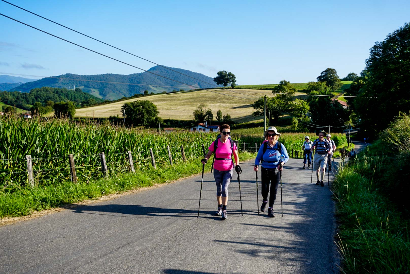 A group of people walking along the Camino De Santiago.